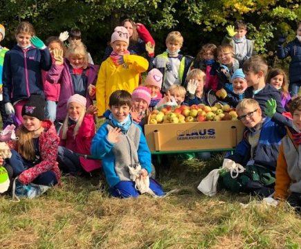 Unsere Äpfel an unseren Schulbäumen sind reif